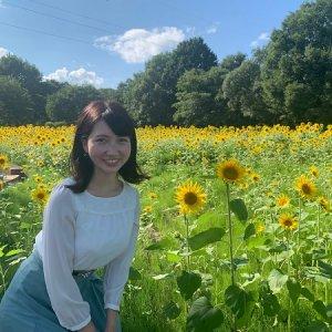 輝くように咲き誇る夏の花🌻