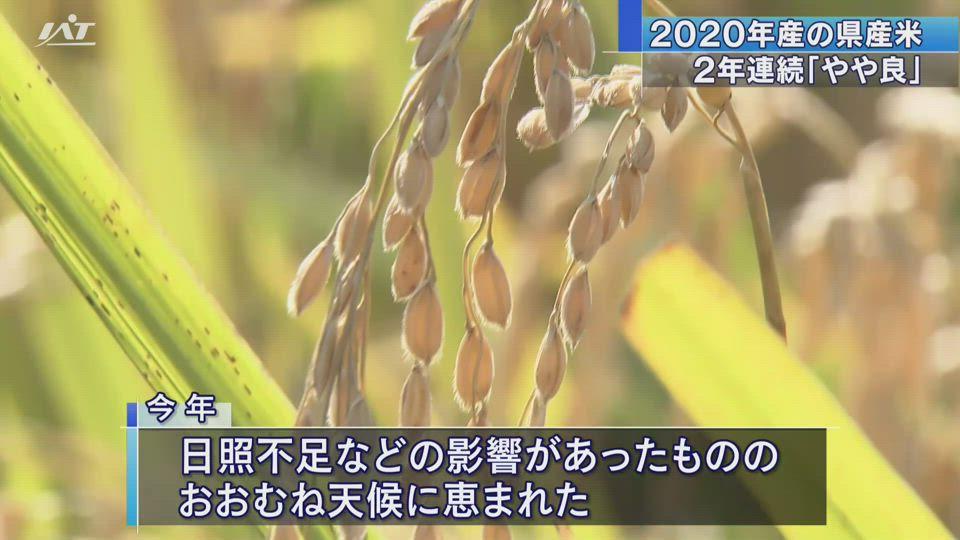 水稲の収穫量の公表