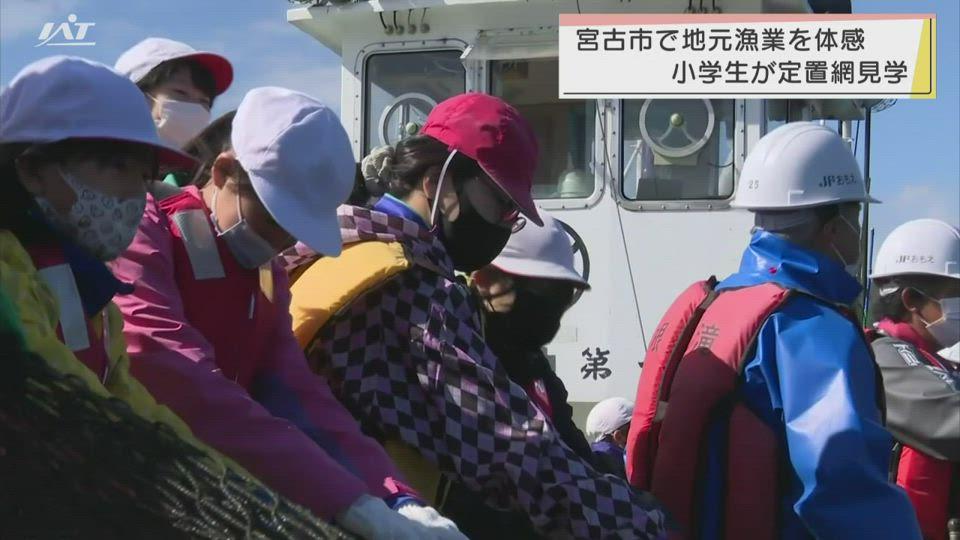 地元の漁業を学ぶ 小学生が定置網を体験学習【岩手・宮古市】