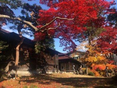南昌荘の紅葉