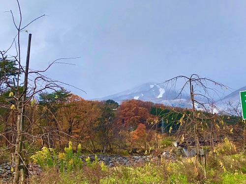 秋から冬へ⛄