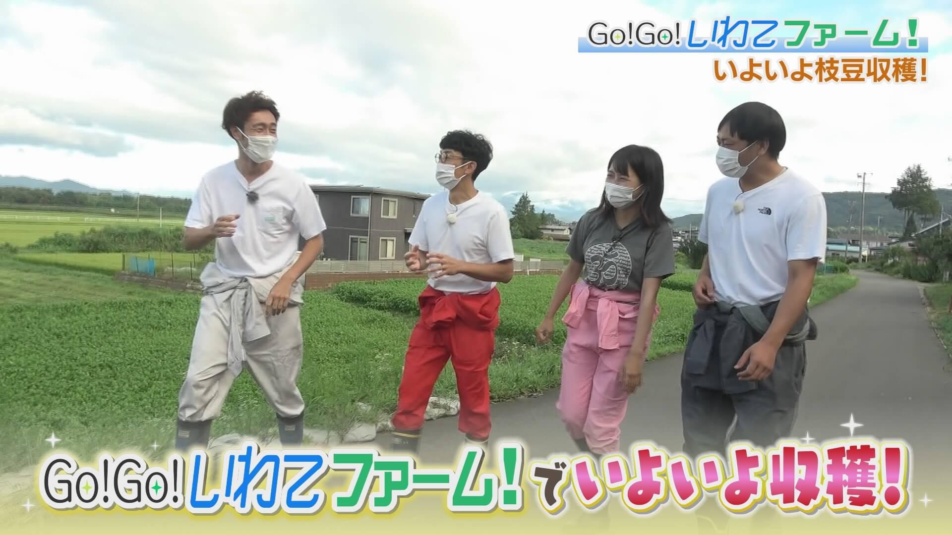 Go!Go!いわてファーム 枝豆収穫